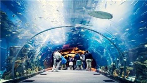 Trabzon'un vizyon projesi Tünel Akvaryum büyüyor