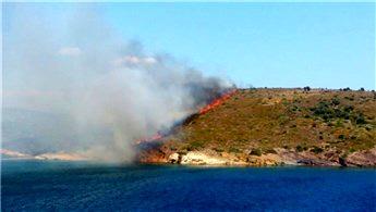 Maden Adası'nda yangın çıktı