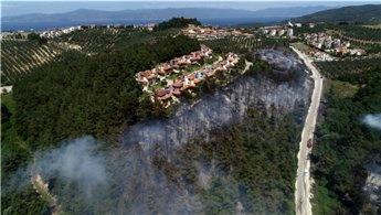 Bursa'da ormanlık alanda yangın!
