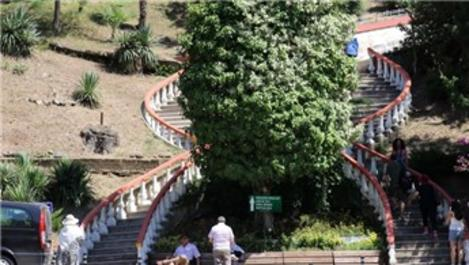 Türkiye'nin ilk canlı ağaç müzesi 89 yaşında!