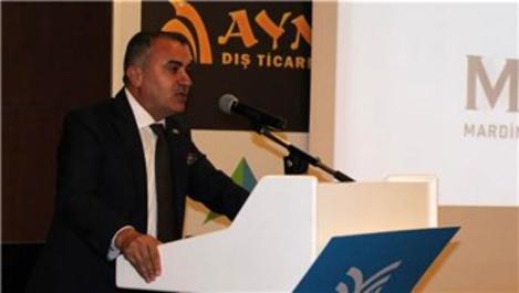 'Türkiye ekonomisi büyümesine hız kesmeden devam edecek'