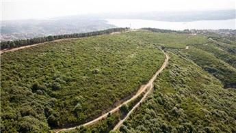 ÖİB, Beykoz Riva'daki taşınmazları özelleştiriyor