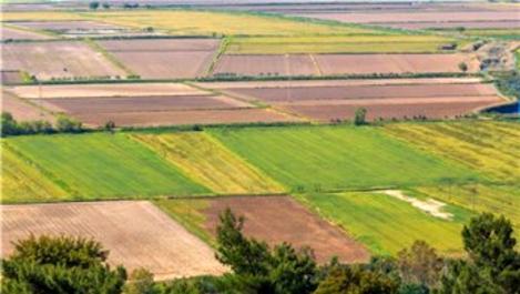 Hazineye ait tarım arazilerine 23 bine yakın başvuru