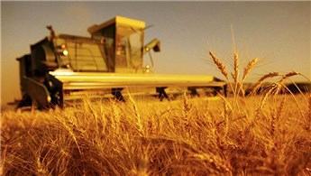 Atıl tarım arazileri çeşitli modellerle üretime kazandırılacak
