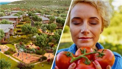 Düşler Vadisi Riva'da her şey organik!