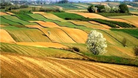 Hazineye ait tarım arazileri için 90 bin kişi başvurdu