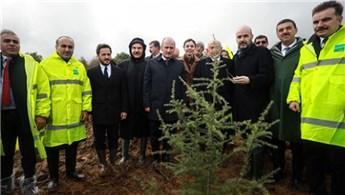 İstanbul Havalimanı için 8 yılda 10 milyon ağaç dikilecek