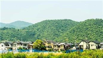 Japonya'daki 'bedava ev' ilanları turistlerin ilgisini çekiyor