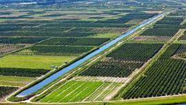 8,5 milyon hektar arazi üretime kazandırılacak