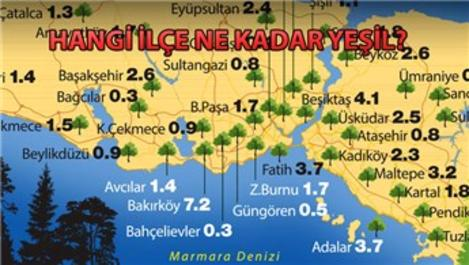 İşte İstanbul'un yeşil haritası!