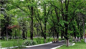 Atatürk Orman Çiftliği'nden kiralık piknik alanı!
