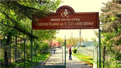 Atatürk Orman Çiftliği tarımsal üretim alanı kiralayacak