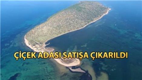 Balıkesir'de 105 milyon liraya satılık ada!