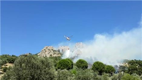 Gömeç'te çıkan orman yangınında 1 hektar alan kül oldu