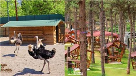 Park Of İstanbul, Çekmeköy'de hizmete girdi!