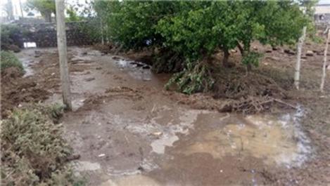 Kars'taki selde 6 ev hasar gördü