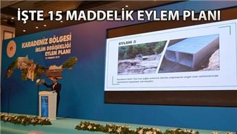 İklim Değişikliği Eylem Planı, Karadeniz'den başladı