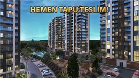 Rengi Antalya fiyat listesi!