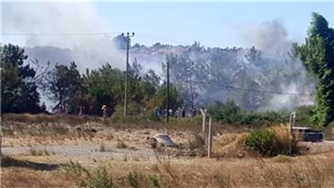 Badavut'ta çıkan orman yangını güçlükle kontrol altına alındı