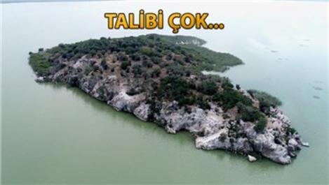 Bursa'da 17 bin TL'ye sahibinden satılık ada!