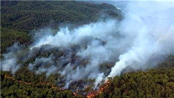 MUĞLA'nın Ortaca ilçesinde orman yangını!