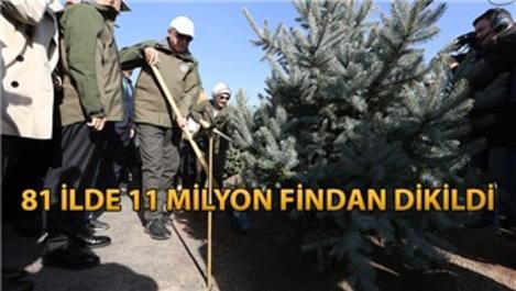 Cumhurbaşkanı Erdoğan, ilk fidanı toprakla buluşturdu