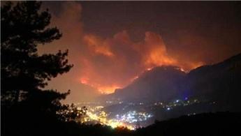 Trabzon'da çok sayıda noktada orman yangını