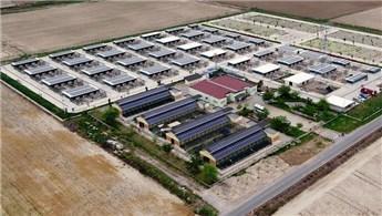 İzmir'de dört tesise daha güneş enerjisi santrali kuruluyor