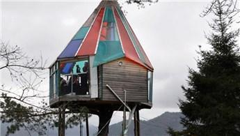 Artvin'deki 18 metrekarelik ağaç ev büyük ilgi görüyor!