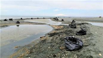 Van Gölü sahillerinden 100 ton atık çöp toplandı