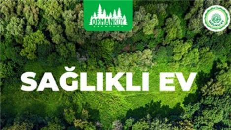 Ormanköy Çekmeköy'de metrekaresi 8 bin TL'ye!