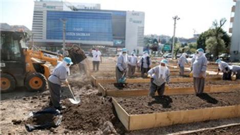 Bursa'nın en değerli arazisini kent bostanı yaptılar