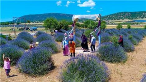 Lavanta Kokulu Köy, 1 milyon turist ağırlayacak