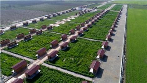 Tarım ve Orman Bakanlığı'ndan hobi bahçesi yoklaması