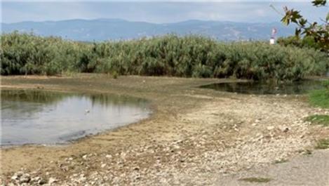İznik Gölü'nde kuraklık endişesi!