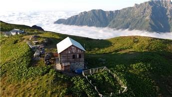 Artvin'deki Nopapeni Yaylası bulut deniziyle dikkat çekiyor