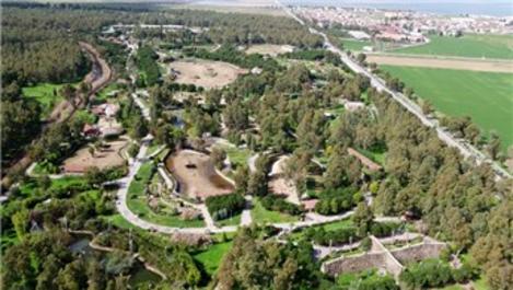 İzmir Doğal Yaşam Parkı ziyaretine korona virüs engeli!