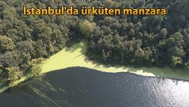 Elmalı Barajı'nın suyu yine yeşile döndü