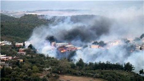 Hatay'daki orman yangını evlere sıçradı