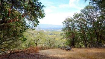 Kaliforniya'daki araziyi Türk Lirası'yla satıyor