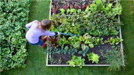 Hobi bahçesi sahipleri Başkan Erdoğan'dan çözüm istiyor