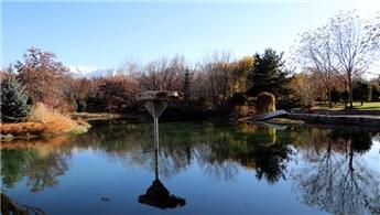 Erzurum'da sonbahar güzelliği yaşanıyor!