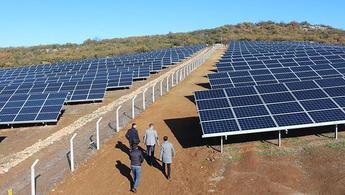 Sakarya'da 55 dönüme güneş panelleri kuruluyor