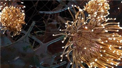 """Siemens, """"Yapay Zeka"""" eserleriyle sanatseverlerin karşısında"""