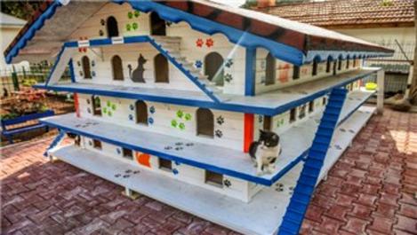 Antalya Kepez Kedi Apartmanı hizmete açıldı!