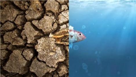 Küresel ısınma ve sonuçları nedir, nasıl önlenir?
