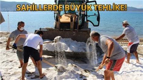 Bodrum kıyılarının yüzde 40'ı Maldivler'e döndü