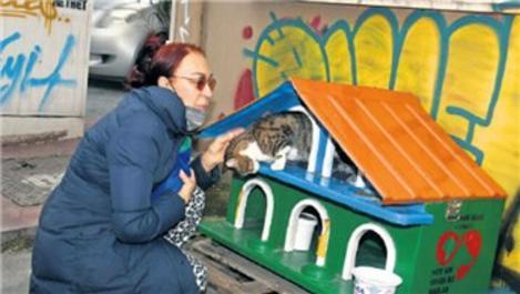 Leman Sam, Cihangir'de kedi evi yaptırdı