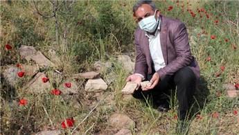 İzmir Beydağ Barajı çekildi, Roma kalıntıları ortaya çıktı!