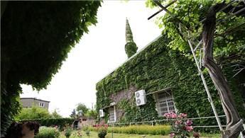 Adana'daki Yeşil Cami, botanik bahçesini andırıyor!